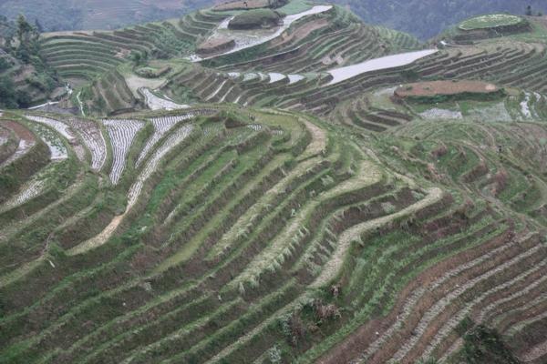 Reise Wiki Bew 228 Sserungssystem Der Reisterrassen