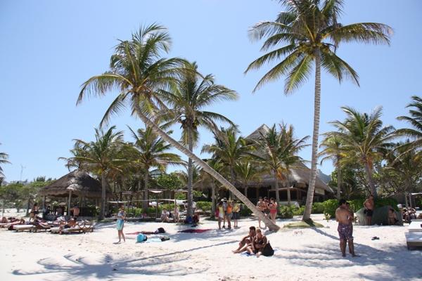 schönste Strand 2011