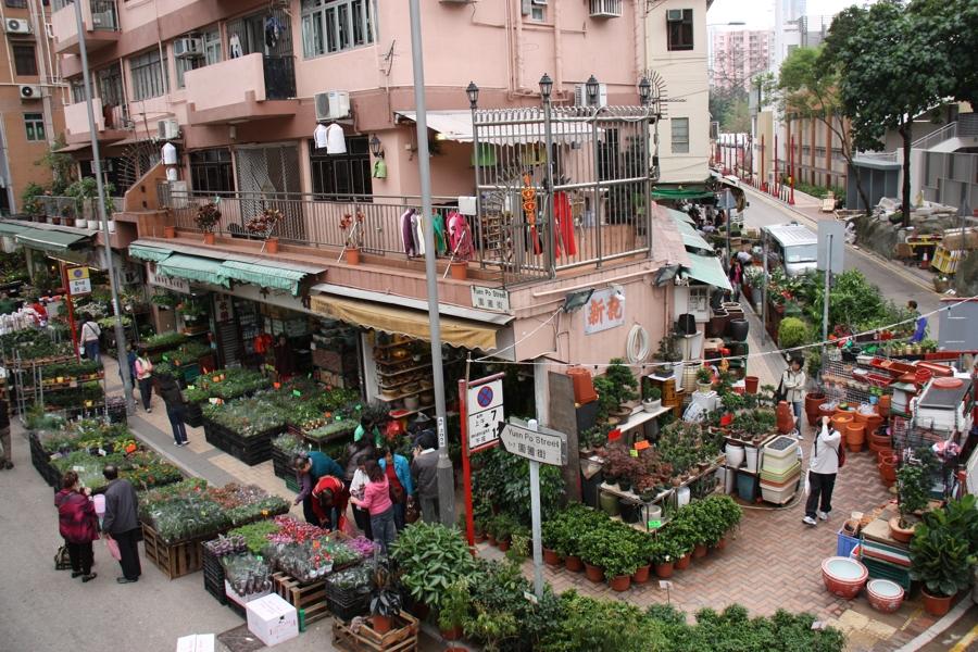Flower Market (Mong Kok)