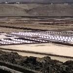 Salztürme der Becken der Salzgewinnungsanlage Salinas de Janubio