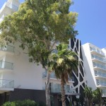 Hotel Riu San Francisco nach Renovierung