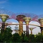 Garden-City-Singapur