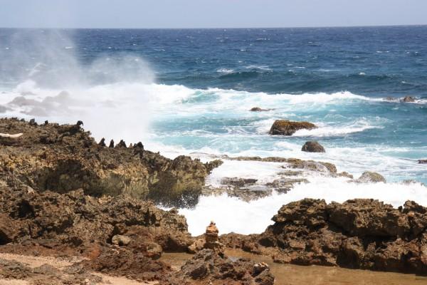 Ost-Küste mit Brandung auf Aruba