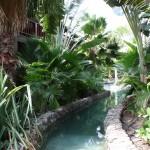 Garten im Kontiki Beach Resort Curacao