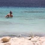 Schnorcheln auf Bonaire