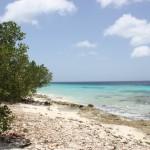 Strand auf Bonaire