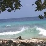 Schnorchelparadies Bonaire