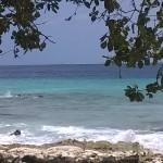 Tauchen und Schnorcheln rund um Bonaire