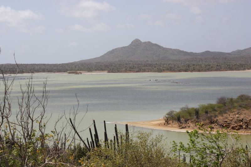 Gotomeer als Brutstätte für Flamingos im Norden von Bonaire