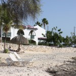 Bungalows am Strand im Plaza Resort Bonaire
