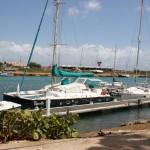 Yachten im Plaza Resort Bonaire