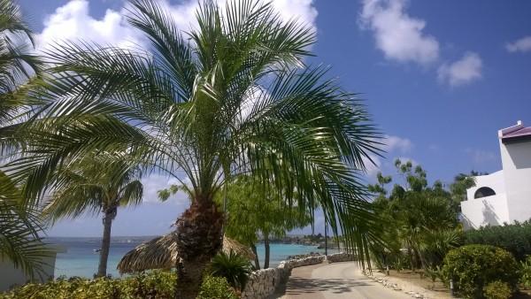 Promenade im Plaza Resort Bonaire