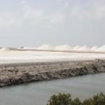 Meersalz auf Bonaire