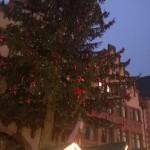 Unbeleuchteter Weihnachtsbaum vor der Eröffnung des Weihnachtsmarktes