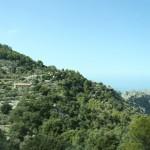 Wälder in den Bergen bei Sa Calobra