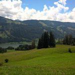 Blick auf den großen Alpsee