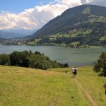 Wanderwege über Kuhwiesen