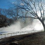 Der Wollman Skating Rink im Central Park hat noch den ganzen Februar geöffnet