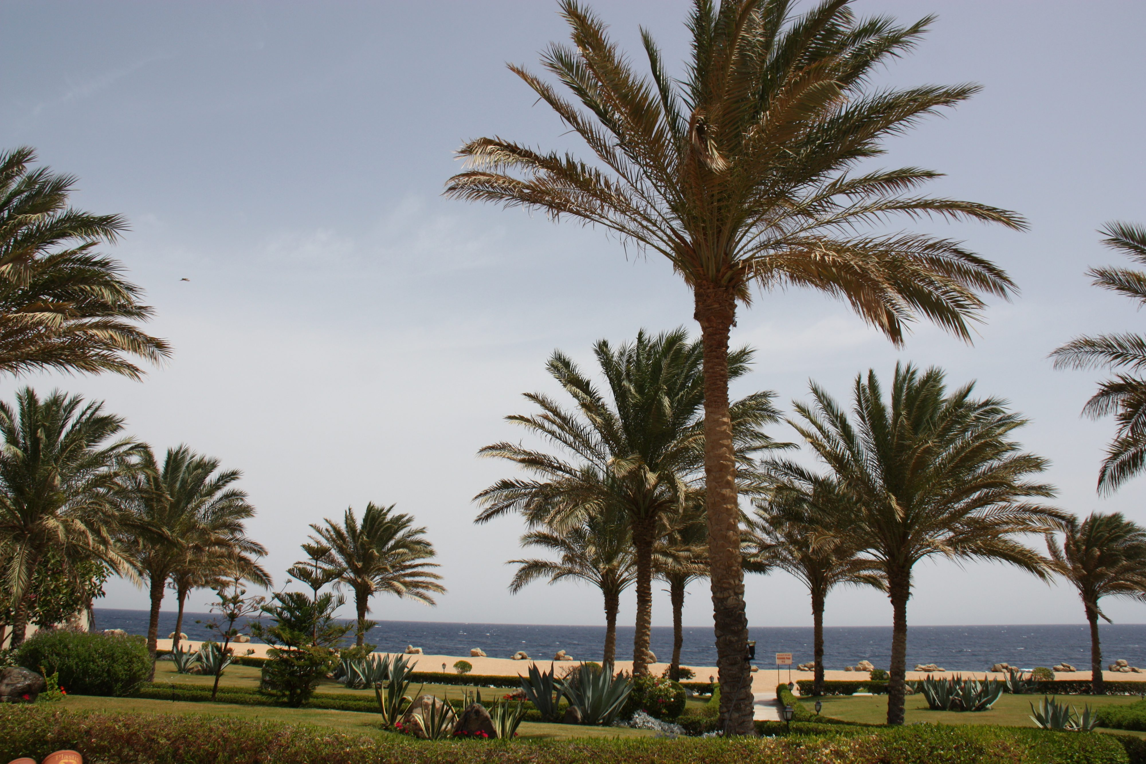 Park im Magic Life Kalawy Ägypten